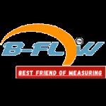 Logo bflow - pt bkm